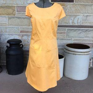 Michelle A Plus Size Dress